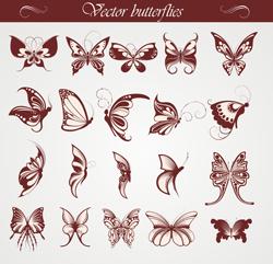 دانلود وکتور پروانه ها