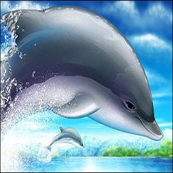 دانلود فایل لایه باز پرش دلفین