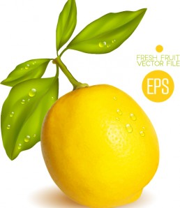 Fresh-lemon-shiny-vector-material-02