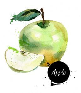 دانلود وکتور سیب نقاشی شده