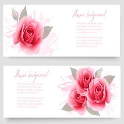 دانلود مجموعه وکتور کارت با گل رز صورتی