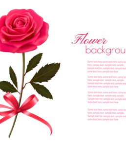 Pink-rose-beautiful-background-vectors-02