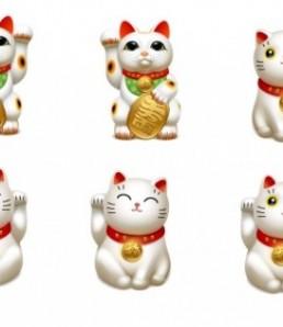 دانلود آیکون های بچه گربه