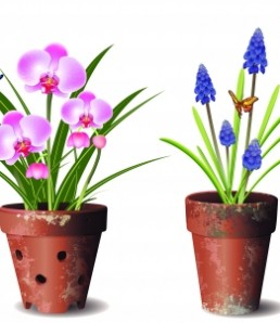 دانلود وکتور گل و گلدان