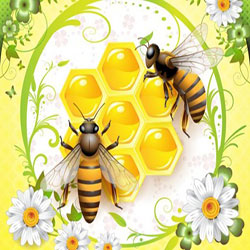 دانلود وکتور زنبور عسل