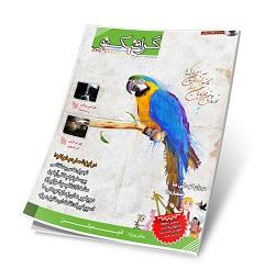 دانلود مجله گرافیک نو شماره 40