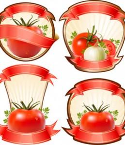 دانلود مجموعه وکتور سس کچاپ و گوجه فرنگی