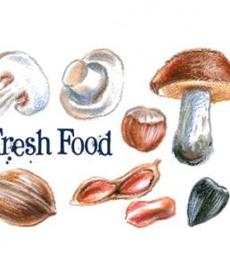 Mushrooms-and-nuts-hand-drawn-vectors