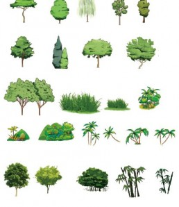 Trees-with-grass-psd-material