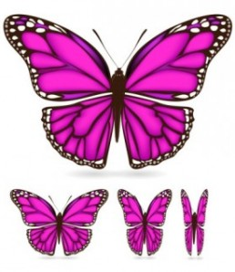 beautiful_butterfly_02_vector_149540