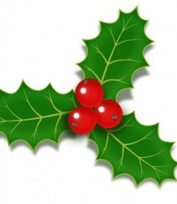 دانلود فایل لایه باز آیکون کریسمس